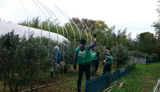 (日本語) 農作業お手伝いボランティア