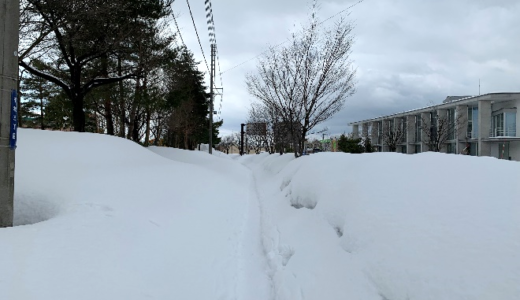 雪の中を歩いてみて